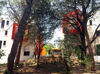 Arboria Ovalie Montpellier _ entrée
